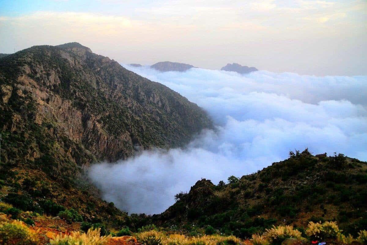 تقع جبال السوده في المملكه العربيه السعوديه في