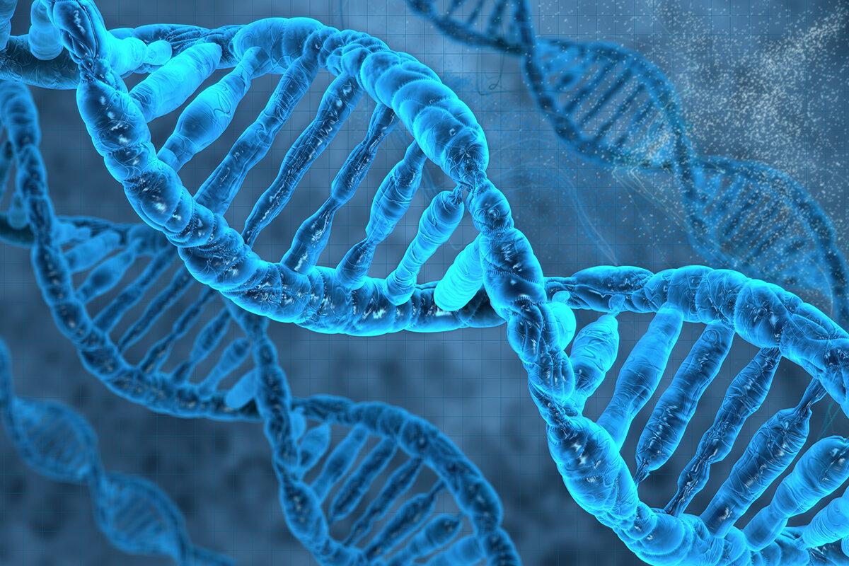 مؤسس علم الوراثة هو