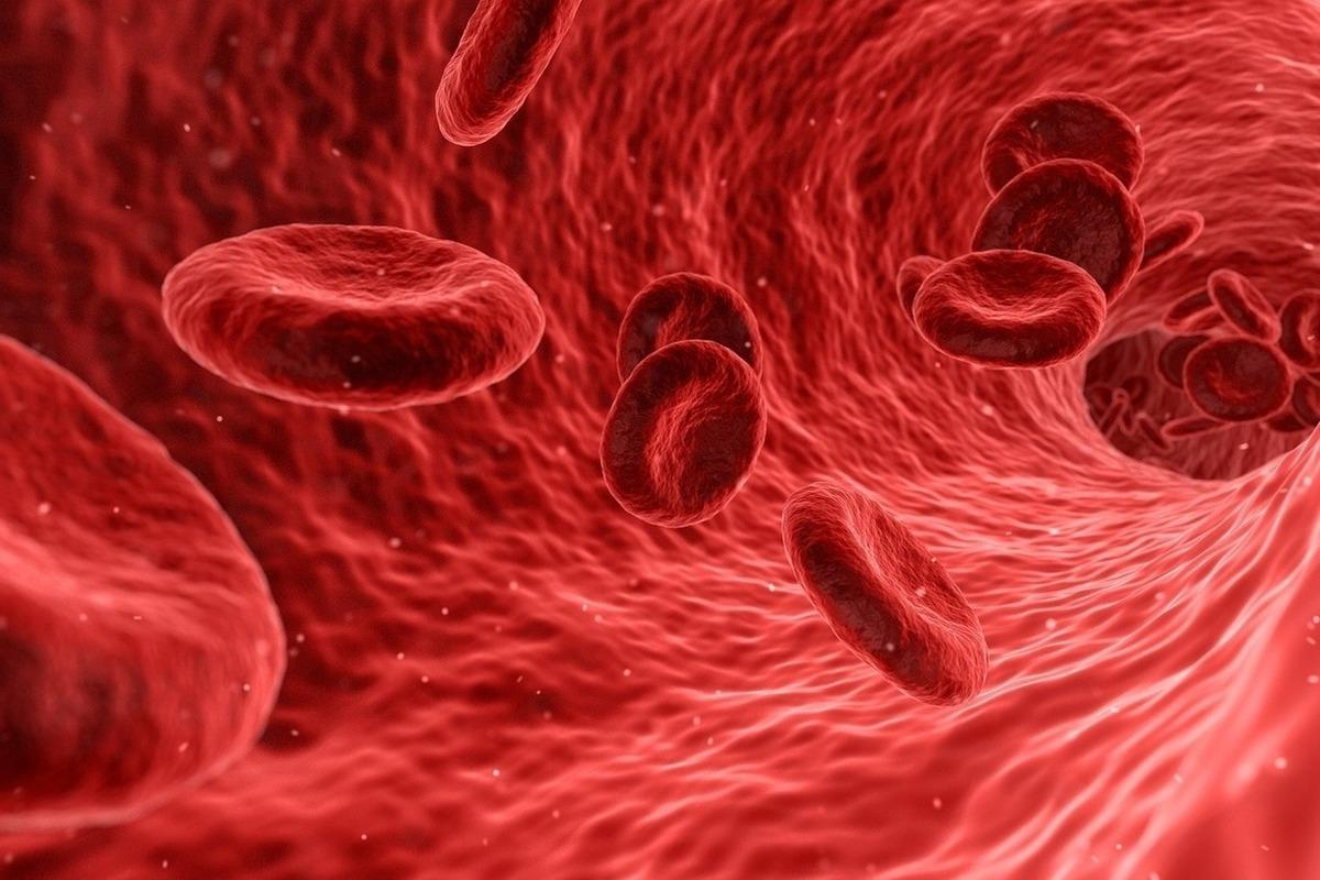 من مكونات الدم وتساعد على عملية تجلط الدم