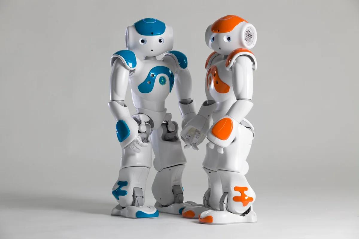 مسابقة السومو يقوم فيها الروبوت