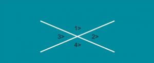 زوج الزوايا الذي يمثل زاويتين متقابلتين بالرأس هو