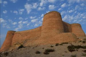 قلعة تاروت