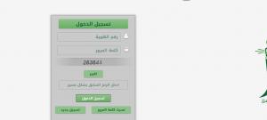 نسبة القبول في جامعة الملك عبدالعزيز