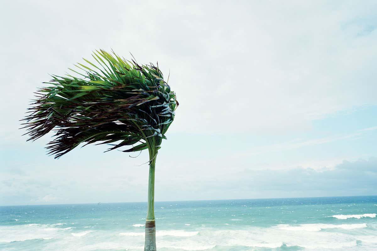 ما هو اسم الرياح التي تهب بقوة على خط الاستواء
