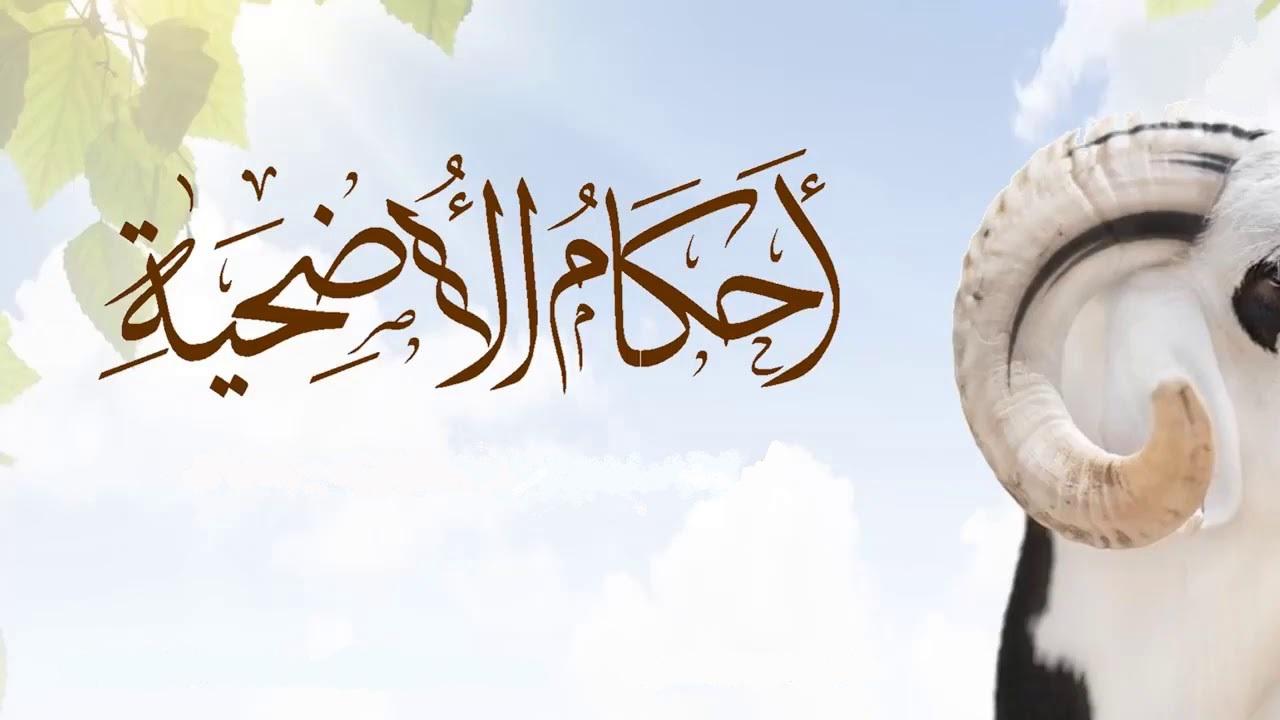 شروط الأضحية من الغنم إسلام ويب