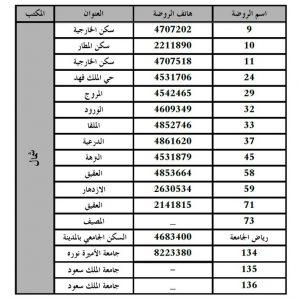 الروضات الحكومية في شرق الرياض